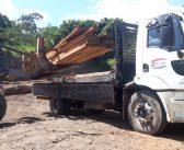 Ibama doa 109 m³ de toras de madeiras apreendidas para o Município