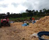 A Secretaria de Agricultura segue atendendo agricultores em toda parte do município de Brasil Novo!